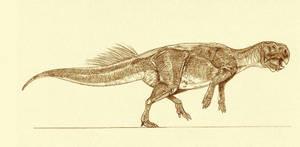 Psittacosaurus major
