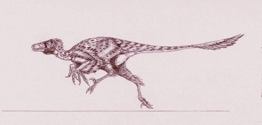 Graciliraptor lujiatunensis by Kahless28