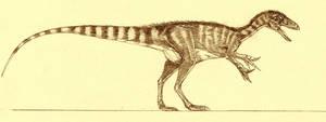 Sinosauropteryx prima by Kahless28