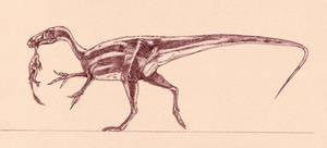 Huaxiagnathus orientalis by Kahless28