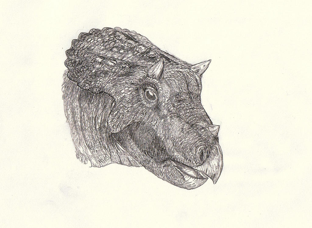 Triceratops 1 by Kahless28