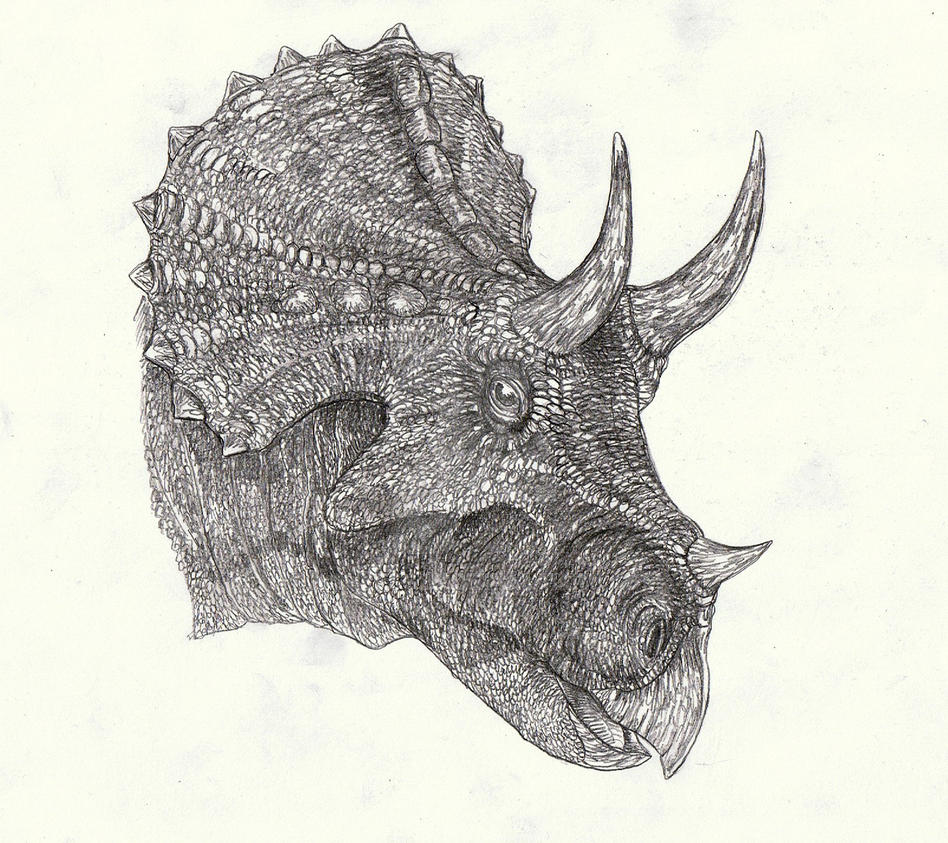 TRiceratops 3 by Kahless28