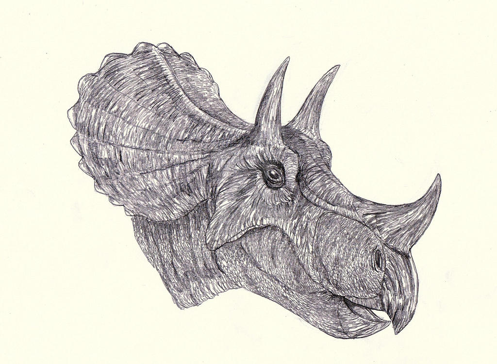 Tatankaceratops - Triceratops by Kahless28