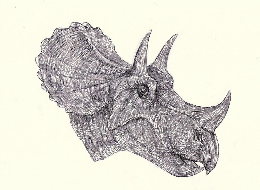 Tatankaceratops - Triceratops by Kahless28