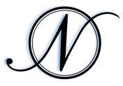 Nickel Logo Icon