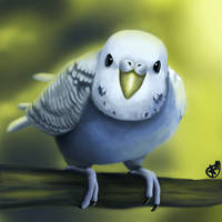 Budgie in the Wild by Kromasick