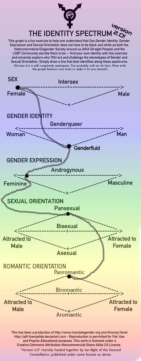 """the spectrum of identity Novak's piece brought to mind maggie nelson's meditation on the spectrum of """" trans"""" gender identities, her partner harry dodge's included,."""