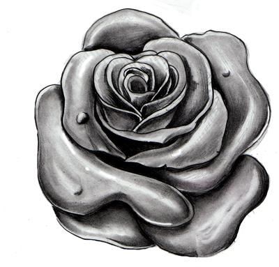 rose study by WillemXSM