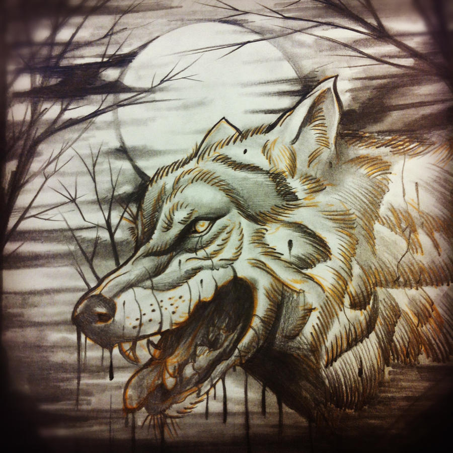 Wolf Tattoo Sketch Wolf Rough Sketch by