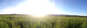 Lovettsville Field Panorama - Summer