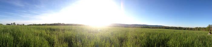 Lovettsville Field Panorama - Summer by ChemDiesel
