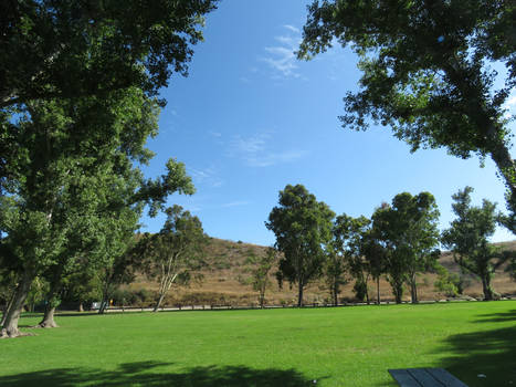 Irvine Regional Park- A place to run freely