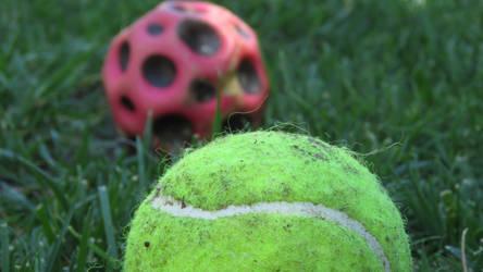 Tennis Ball's Depth of Field