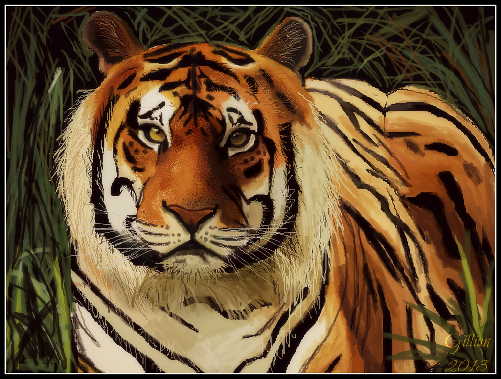 an analysis of the bengal tiger To save the fearsome and elusive bengal tiger, conservation  for example,  karmacharya says they've analyzed musk deer scat and were.