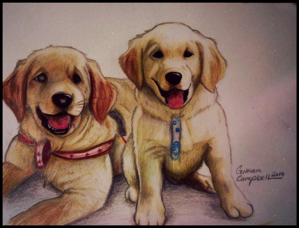 Puppies by gilly15