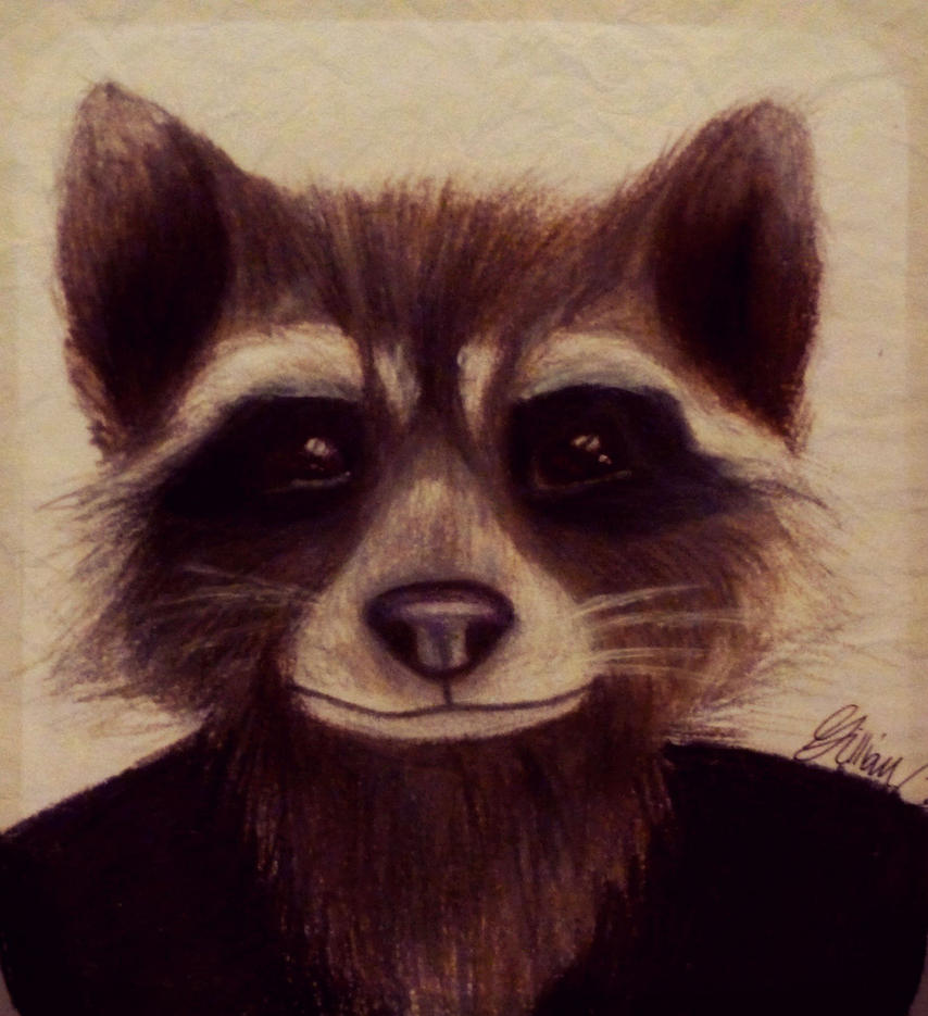 Rocket Raccoon by gilly15