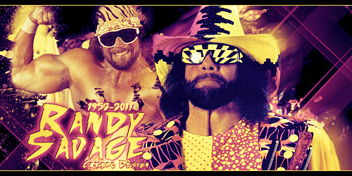 Randy Savage Banner By Cre5po