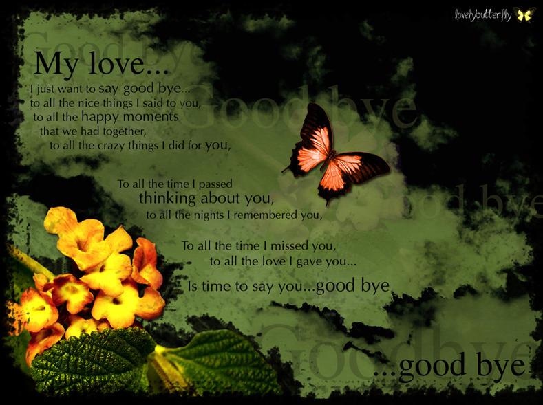 Good bye my love by lovelybutterfly