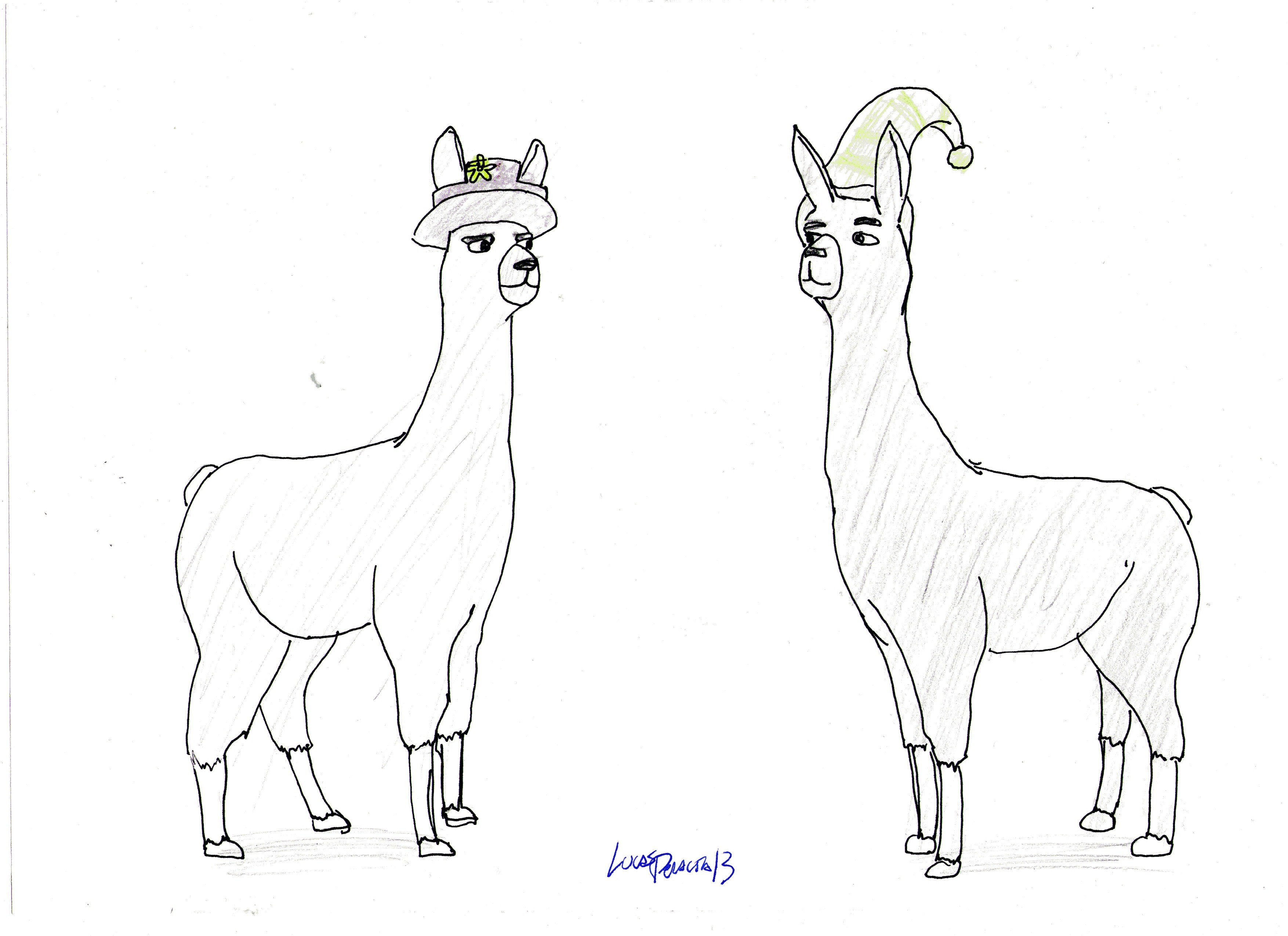 Llamas with hats by lukasperalta13 on deviantart