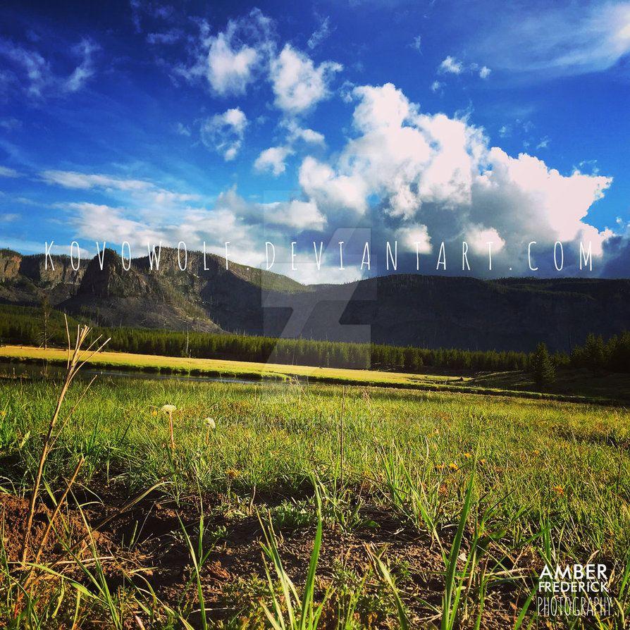 The Golden Valley by KovoWolf