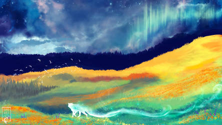 Fields Of Color by KovoWolf