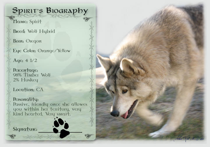 .:: Spirits Biography ::. by KovoWolf