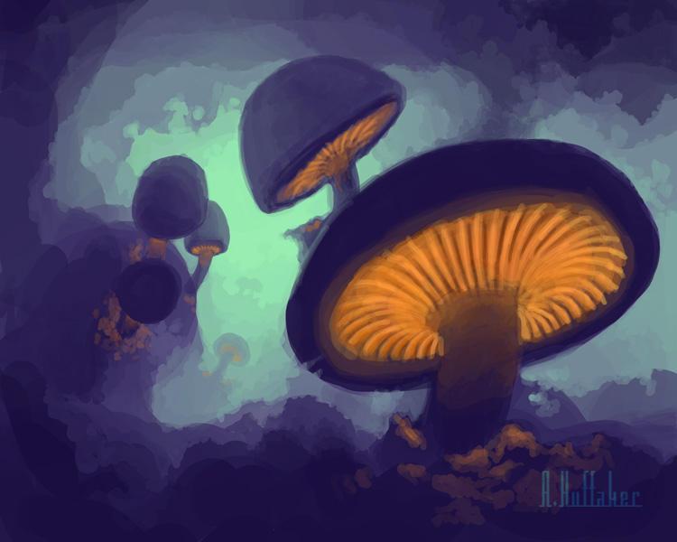 Fungi by artgeektopia