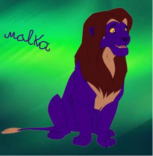 Malka Lion - King Of Southern PrideLands