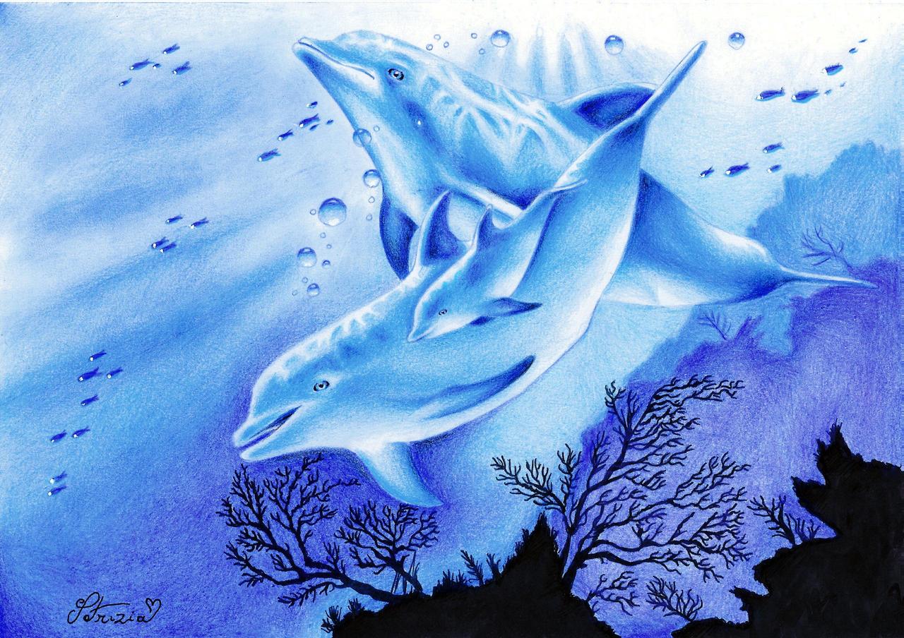 Dolphins by DreamyNaria