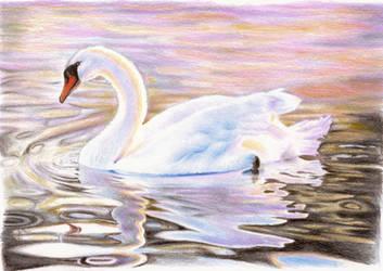 The swan by DreamyNaria