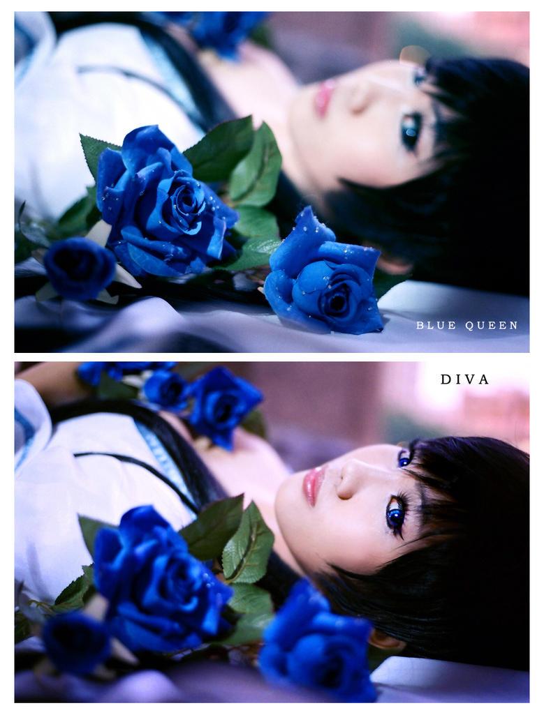 Blood+ : D I V A by Astellecia