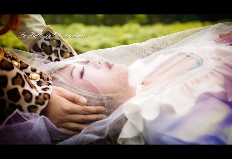 Ludwig Kakumei: Sleeping Beauty by Astellecia