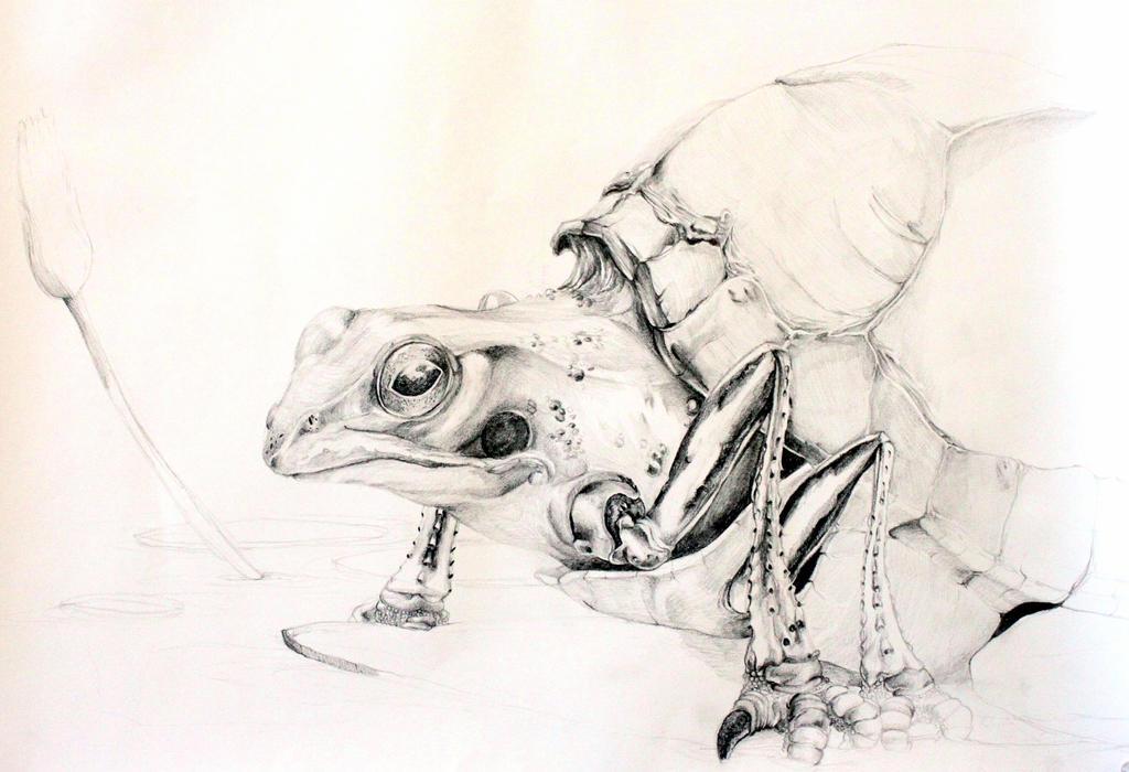 Turtle Beetle Frog Bird by BubblesAndTea