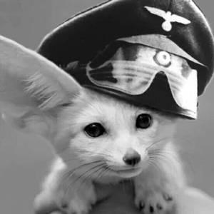 Fox Rommel