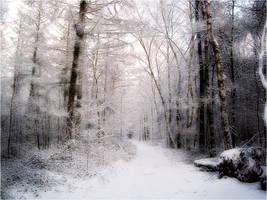 January Snow by Kirstinfae