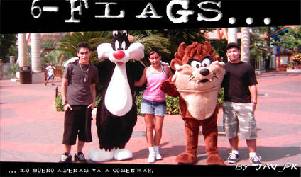6-flags