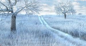 Snow Meadow Path