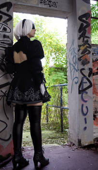2B: Looking out