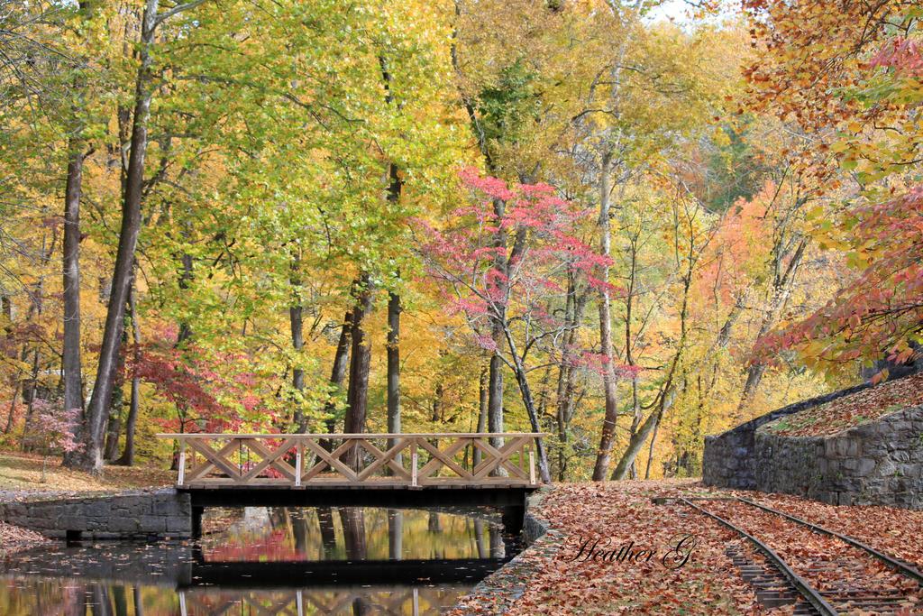 Autumn Splendour by CASPER1830