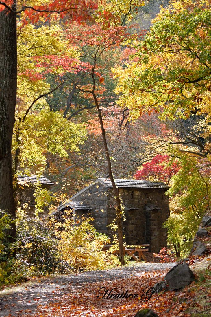 Autumn Splendour 2 by CASPER1830