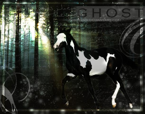^ Twilightstars ^ horses 63316743be9608fa