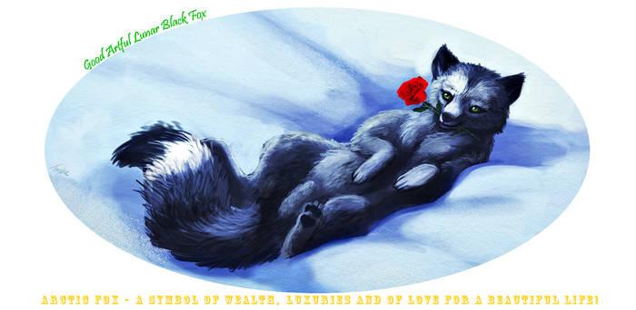 Arctic Fox (mug design)