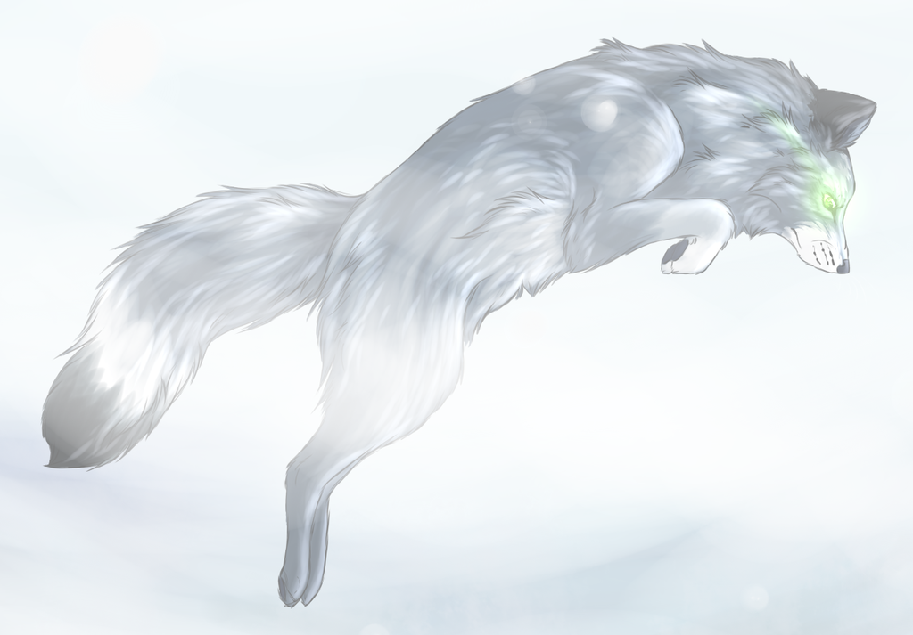 Dark Arctic Fox