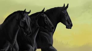 study horse by GRIM-GIT