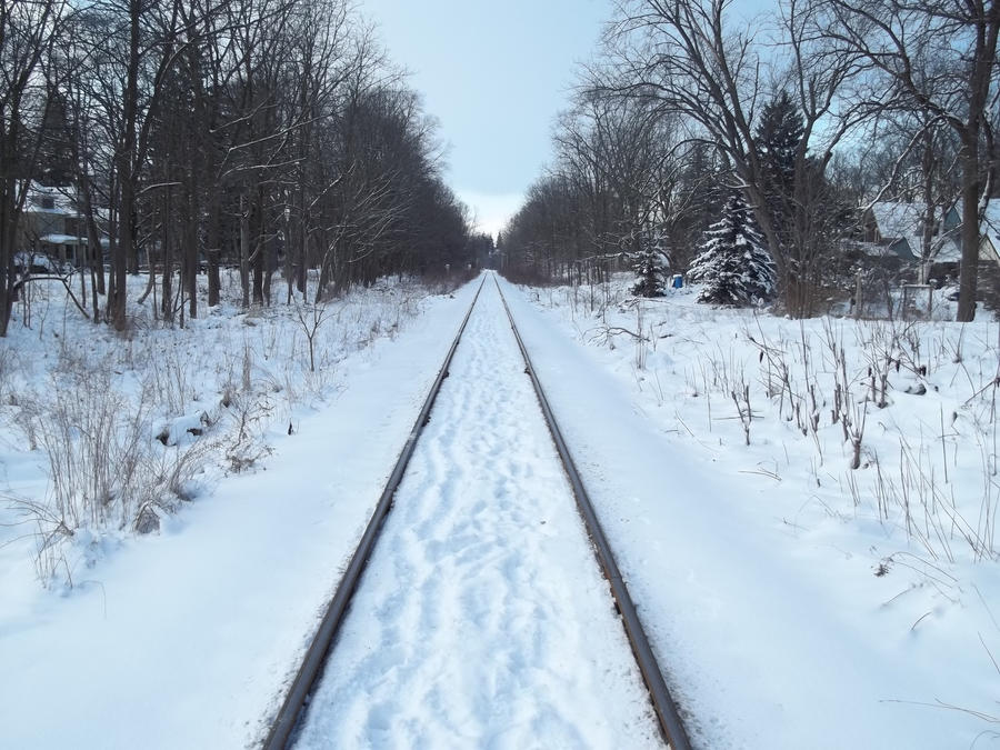Tracks In The Snow by Walking-Tall