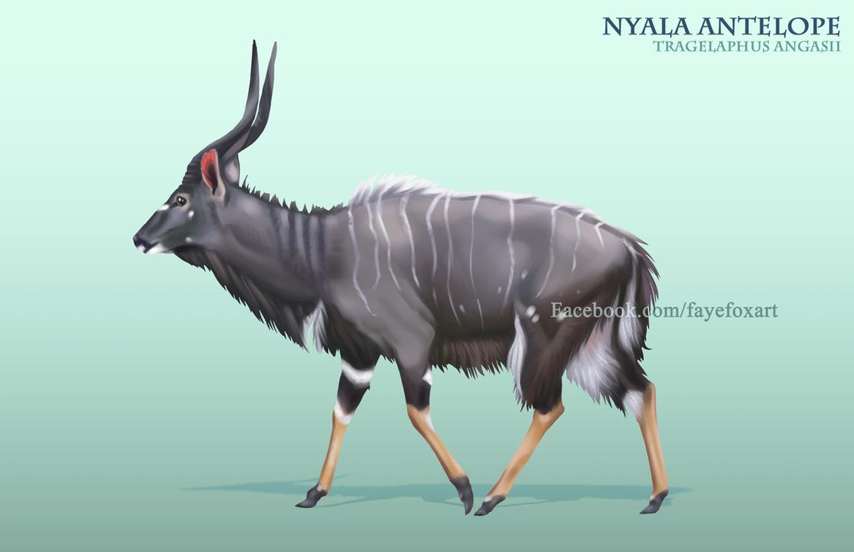 Nyala by Faye-Fox
