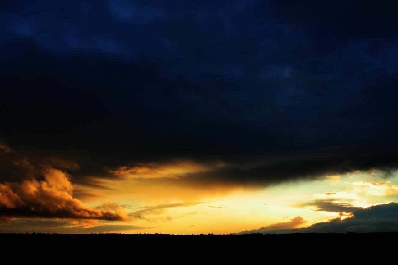 sky 443 by reesy1080