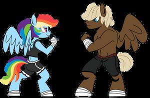 Ponies Sparring