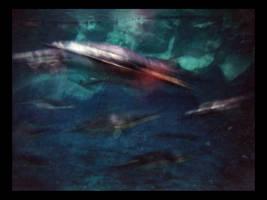 Penguins by dakotapearl