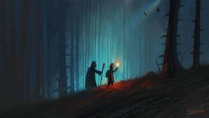 A Walk In The Dark Forest